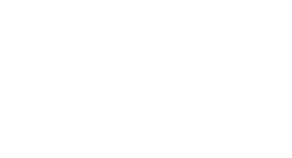 IndieFEST Award of Merit Special Mention